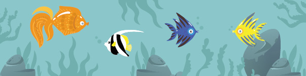 Fish care tips