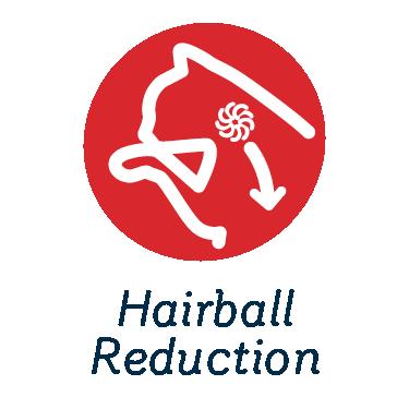 Hairball Reduction