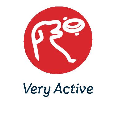 Very Active