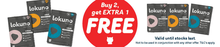 Buy 2 get 1 free on Lokuno Cat pouches